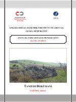 1 - Ankara Doğal Elektrik Üretim ve Ticaret A.Ş.