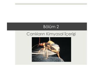 2. BÖLÜM.pptx - Prof. Dr. Bektaş TEPE