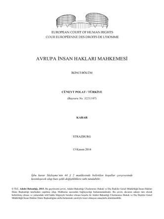 13 Kasım 2014 tarihli Cüneyt Polat v. Türkiye kararı
