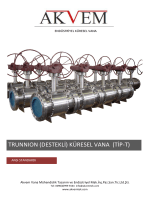 Trunnion Küresel Vana ANSI Standardı