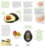 Verita Avokado broşürü