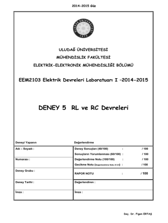 DENEY 5 RL ve RC Devreleri - Elektrik