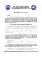 DirectX Picking Uygulaması - Karadeniz Teknik Üniversitesi