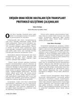 erişkin orak hücre hastaları için transplant protokolü geliştirme
