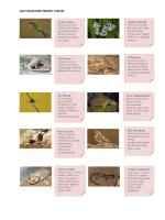 gap faunasının önemli türleri
