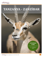 TANZANYA - ZANZİBAR
