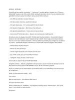 PDF Versiyonu