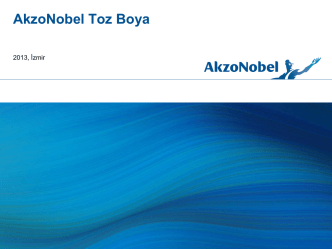 Arial Bold 30pt - AkzoNobel Toz Boya