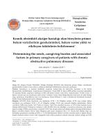 Kronik obstrüktif akciğer hastalığı olan bireylerin primer bakım