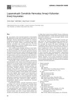 Laparoskopik Cerrahide Hemostaz Amaçlı Kullanılan Enerji
