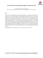Titanyum Dioksit Nanopartikülünün Buğday Çimlenmesine Etkisi