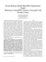 Prostat Kanseri˙Ilintili MikroRNA Kümelerinin Tespiti Detection of