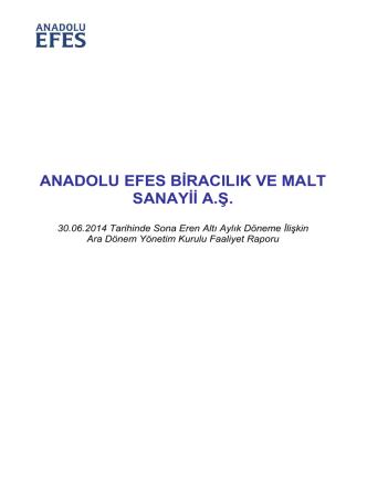 ANADOLU EFES BĠRACILIK VE MALT SANAYĠĠ A.ġ.