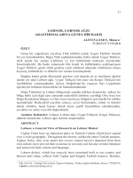 ALİYEVA ESEN, Minara-LOBNOR, LOBNOR AĞZI