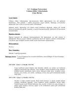 Çince - Yeditepe Üniversitesi