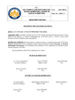 imar planlama ve gecekondu komisyonu raporu