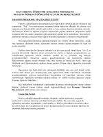 Erasmus Öğrenci - Öğrenim ve Staj Hareketliliği Hakkında Genel Bilgi