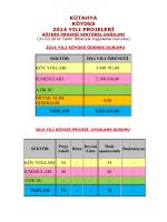 2013 KÖYDES Program Uygulamaları