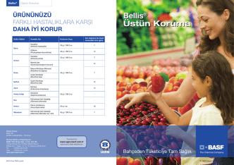 Bellis - BASF Türk Bitki Koruma