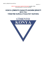 2013 Yönetim Kurulu Faaliyet Raporu