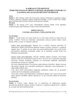 Öğretim Elemanlarının Yurtdışı Akademik Etkinlik Ve Çalışmalara