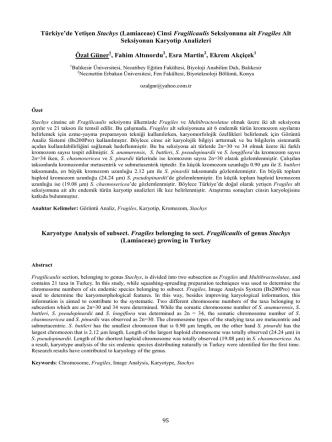 (Lamiaceae) Cinsi Fragilicaulis Seksiyonuna ait