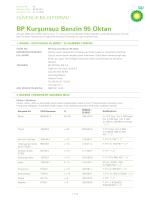 BP Kurşunsuz Benzin 95 Oktan 260.7 KB