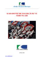 Balıkçılık Raporu - Ordu Ticaret Borsası