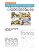 Keman, Yaylı Çalgılar ve Sürekli Bas İçin Dört Konçerto, Op.8