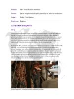 Savaş bölgelerindeki gıda güvenliği ve yetersiz beslenme