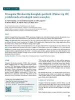 Triangular fibrokartilaj kompleks periferik (Palmer tip