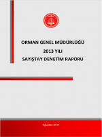 ORMAN GENEL MÜDÜRLÜĞÜ 2013 YILI SAYIŞTAY