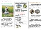 MEVSİMLİK BAKIMLAR - Ankara İl Gıda Tarım ve Hayvancılık
