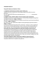Paragraf-2