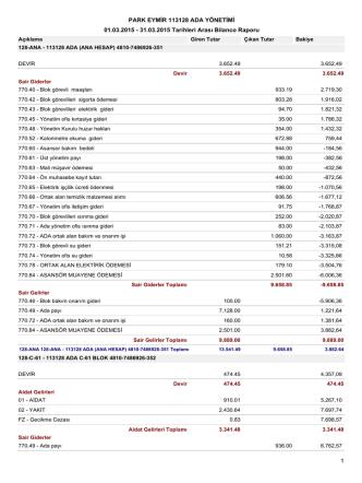 01.03.2015 - 31.03.2015 Tarihleri Arası Bilanco Raporu PARK