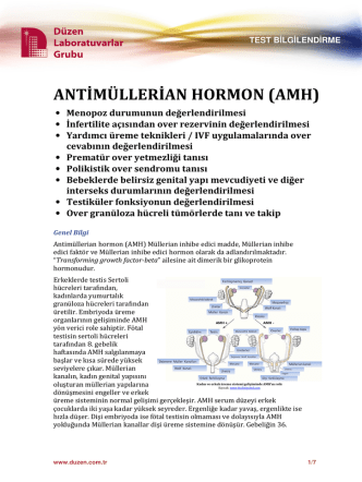 ANTİMÜLLERİAN HORMON (AMH)