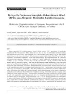 160-167 Murat Sayan.indd