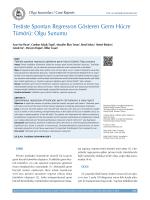 Testiste Spontan Regresyon Gösteren Germ Hücre Tümörü: Olgu
