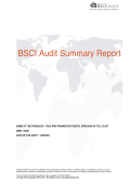 BSCI Audit Summary Report - Teks