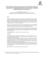 Fıdıc Uluslararası İnşaat Sözleşmeleri İle Kamu İhalelerinde
