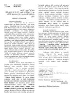 06.06.2014 - berat kandili
