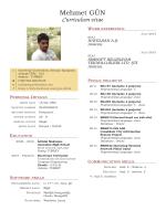 Mehmet G¨UN Curriculum vitae