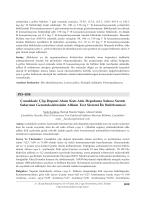 PD–038 Çanakkale Çöp Deponi Alanı Katı Atık Depolama Sahası