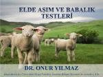 elde aşım ve babalık testleri - EKKIP