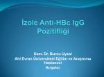 İzole Anti-HBc IgG Pozitifliği