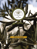 onlıne katalog - İznikli Gıda Zeytin ve Zeytinyağı