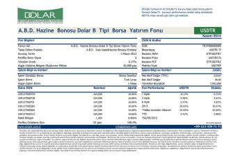 A.B.D. Hazine Bonosu Dolar B Tipi Borsa Yatırım Fonu