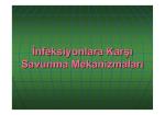 3-Inf. karşı savunma mekanizmaları
