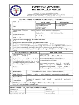 (Sem) Analiz Talep Formu - Dumlupınar Üniversitesi