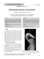 omurganın sagittal plan analizi